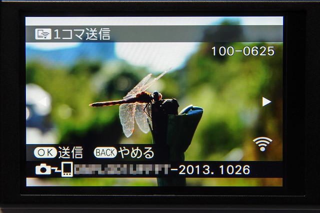 K5LS3208-Edit.jpg