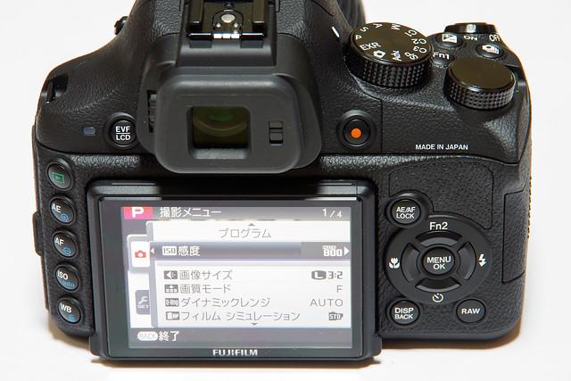IMGP7676.jpg