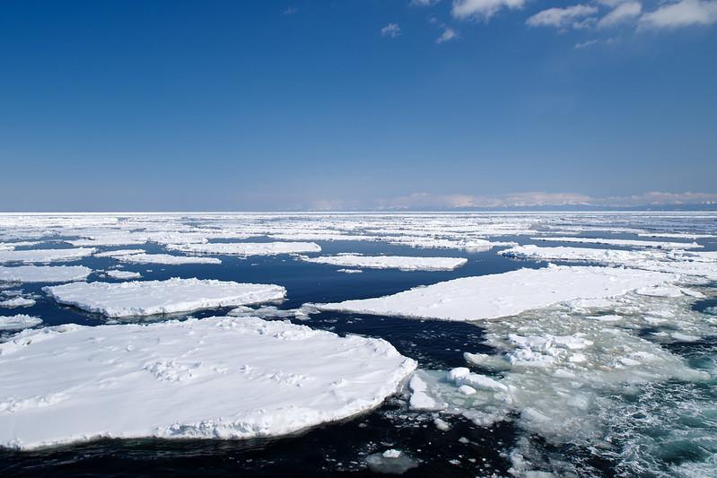 おーろら号から見た流氷_3