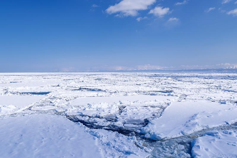 おーろら号から見た流氷_5