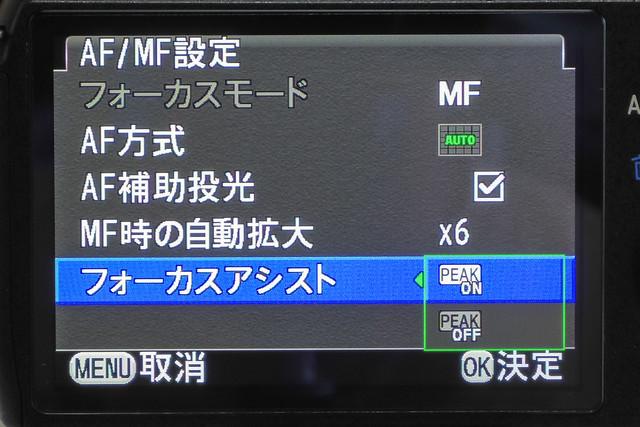 IMGP9630.jpg