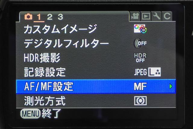 IMGP9631.jpg
